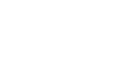BROOKLYN WRITERS SPACE